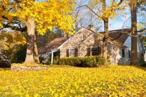 autumn_shutterstock_86326951_1